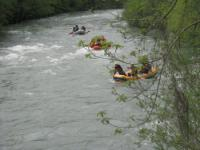 Dan na Tari - Mojkovac 02.05.2013.