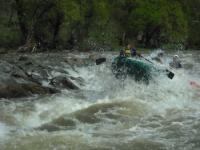 Ibar - rafting - 2 dana