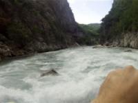 Lim 09-10.06.2012