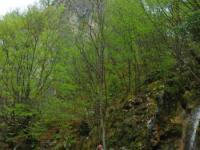CANYONING, Kanjon Visoke, Veliki Rzav - 25.04.2011.