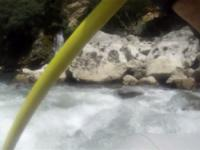 Lim 29.07.2012
