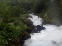 Tara (Splavište - Žugića Luka) 01.08.2015