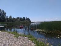 Zasavica, specijalni rezervat prirode